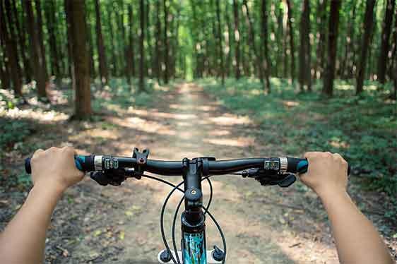Duale Studentin fährt mit dem Fahrrad durch den Wald.