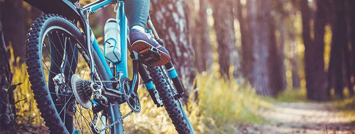 Ein dualer Student fährt mit dem Mountainbike durch den Wald.